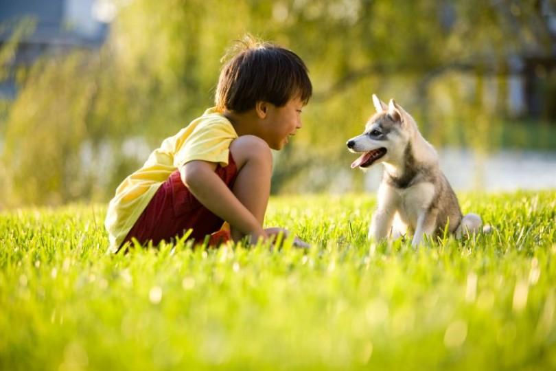 child with puppy